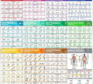 [12-PACK] Laminated Large Workout Poster Set - Perfect Workout Posters For Home Gym - Exercise Charts Incl. Dumbbell, Yoga Poses, Resistance Band, Kettlebell, Stretching & More Fitness Gym Posters
