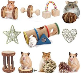 AWITHZ Hamster Chew Toys, Guinea Pig Toys Natural Wooden Pine Rats Chinchillas Toys Accessories Dumbells Exercise Bell Roller Teeth Care Molar Toy for Birds Bunny Rabbits Gerbils