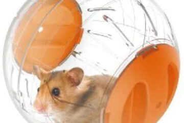 JUILE YUAN Silent Hamster Mini Running Activity Exercise Ball 4.72 inch Toy Transparent Hamster Ball Dog Special Toy Ball Small Animals Cage Accessories