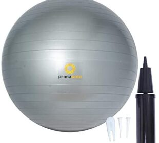 Primasole Exercise Ball (17.7icnh Silver Gray) for Stability, Balance, Fitness with Inflator Pump Balance Ball PSS91NH059A