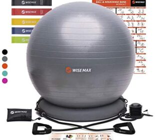 WISEMAX Exercise Ball Chair – Stability Yoga Balance Ball with Ring Base, Resistance Bands & Pump, Loop Bands, Carry Bag, Poster for Home, Office, Posture, Gym Bundle, Home Workout- 65cm