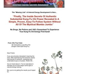 Chi Development- Resources For Chi Kung Tai Chi Internal Martial Arts
